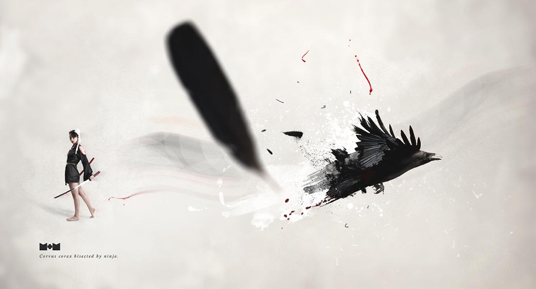raven_1100px
